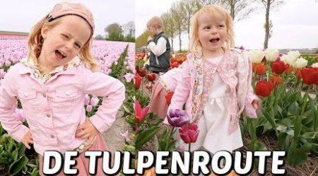 De Bellinga's – Op Tulpenbollen Route Ontdekken we Het Geheim v/d Oogst (+ 👵🏻👴🏻 48jr Getrouwd!) #2094