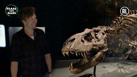 Klaas Kan Alles – Tyrannosaurus Rex Uit Noord-Amerika! – Kan Klaas Voor Één Dag Paleontoloog Zijn?
